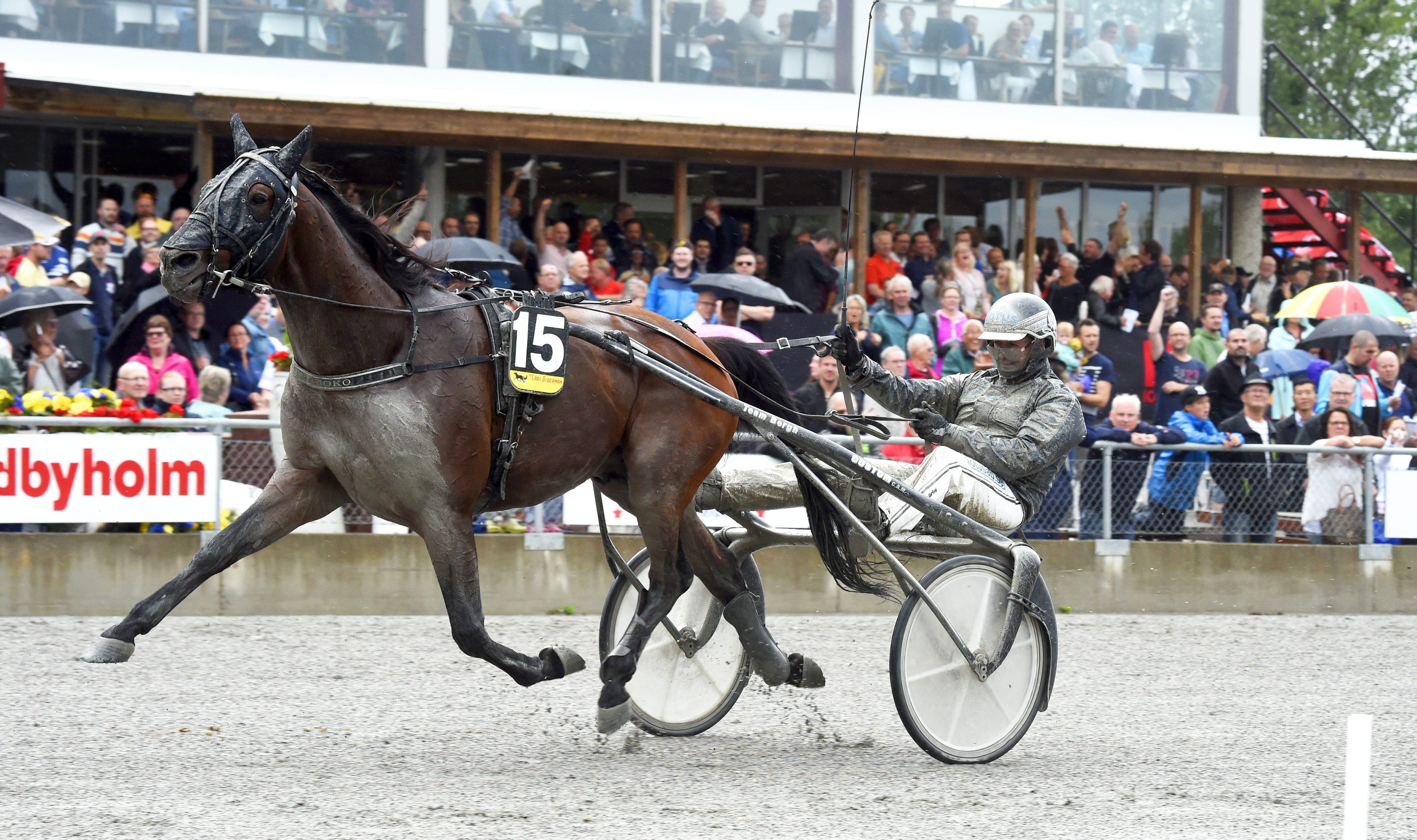 Foto: Martin Langels/ALN Sundbyholm 20160702